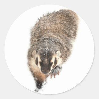 Prairie Badger in Winter snow Round Sticker
