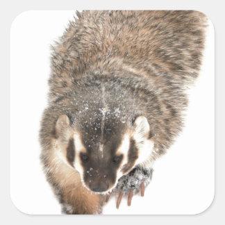 Prairie Badger in Winter snow Square Sticker