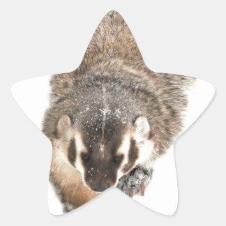 Prairie Badger in Winter snow Star Sticker