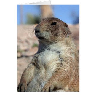 """Prairie Companion"" Card.  Customize me! Card"