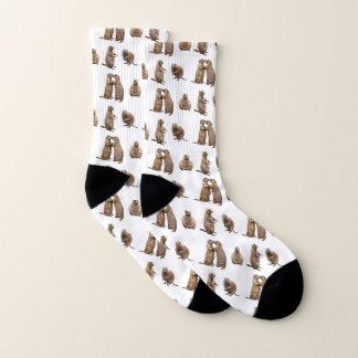 Prairie Dog Frenzy Socks (choose colour)