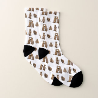 Prairie Dog Frenzy Socks (choose colour) 1