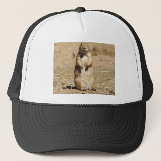 Prairie Dog Hat
