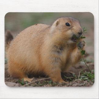 Prairie Dog Mouse Pad