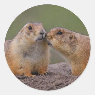 prairie dog round sticker