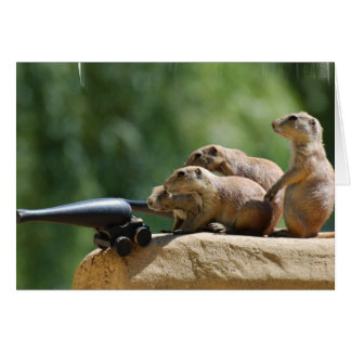 Prairie Dog Soldiers Greeting Card