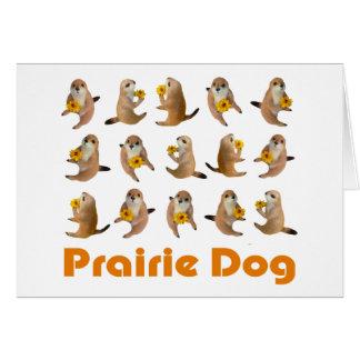 prairie dog's stuffed toy card