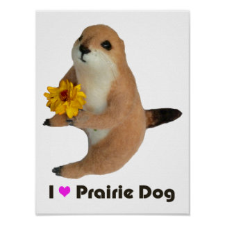 prairie dog's stuffed toy posters