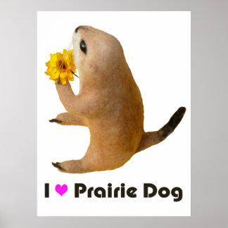 prairie dog's stuffed toy print