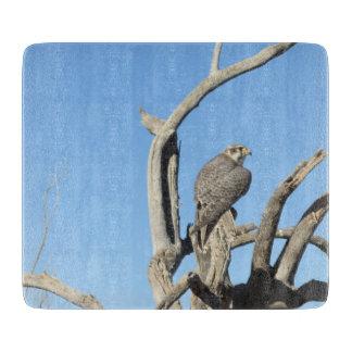 Prairie Falcon Cutting Board