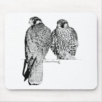 Prairie Falcons Mouse Pad