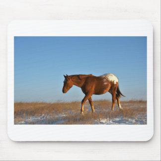 Prairie Horse Mouse Pad