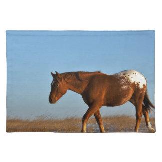 Prairie Horse Place Mat