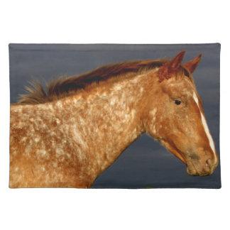 Prairie Horse Placemats