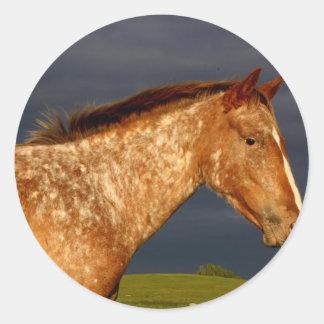 Prairie Horse Round Sticker