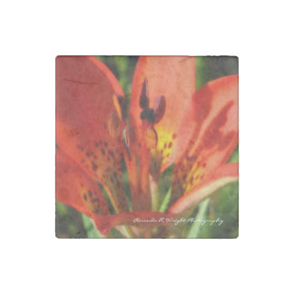 Prairie Lily Magnet Stone Magnets