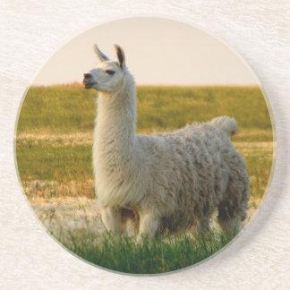 Prairie Llama Mama Coaster