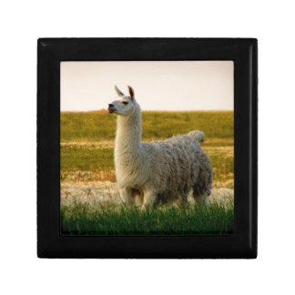 Prairie Llama Mama Gift Box