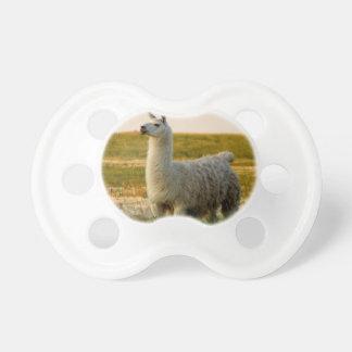 Prairie Llama Mama Pacifier