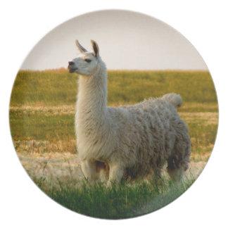 Prairie Llama Mama Plate