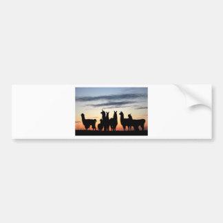 Prairie Llama silhouette Bumper Sticker