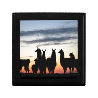 Prairie Llama silhouette Gift Box