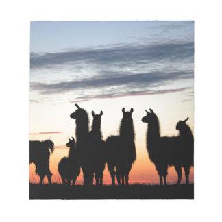 Prairie Llama silhouette Notepad