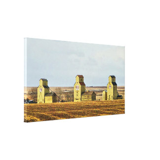 Prairie Sentinels Mossleigh Alberta Canvas Print