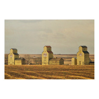Prairie Sentinels Mossleigh Alberta Wood Panel