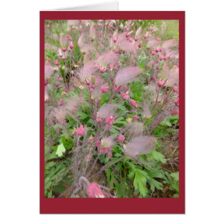 Prairie Smoke Blank Note Card