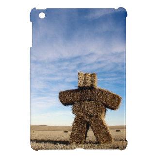 Prairie Strawman Case For The iPad Mini