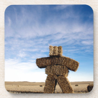 Prairie Strawman Coaster