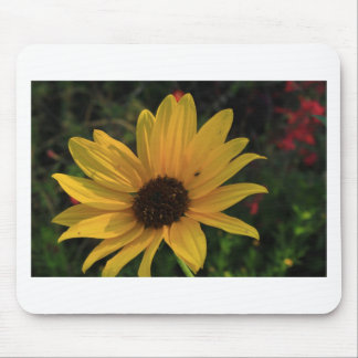 Prairie Sunflower Mouse Pad