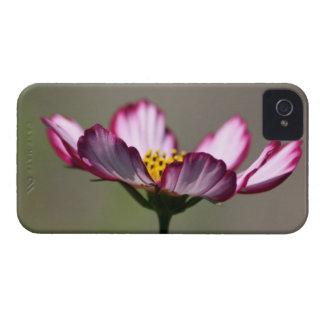 Praise Him Flower iPhone 4 Case