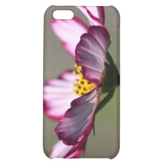Praise Him Flower Cover For iPhone 5C