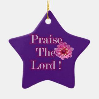 Praise The Lord Star Ornament