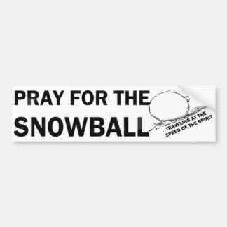 Pray for the Snowball  (LG) Bumper Sticker