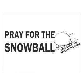Pray for the Snowball LG Postcard