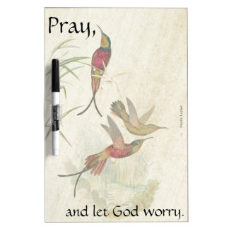 Pray Hummingbird Birds Wildlife Dry Erase Board