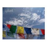 Prayer flags, Leh, Ladakh, India Post Card