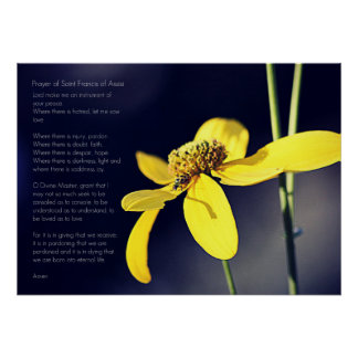 Prayer St. Francis with Yellow Flower & Bug Poster