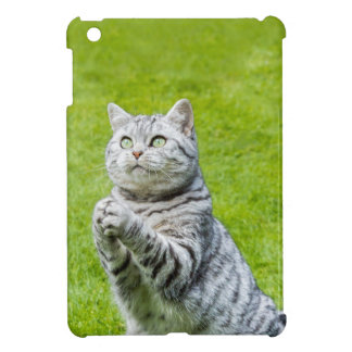 Praying cat on green grass iPad mini cover