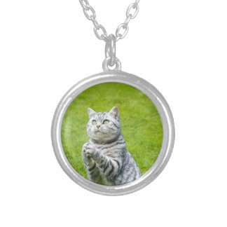 Praying cat on green grass silver plated necklace