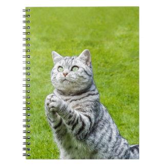 Praying cat on green grass spiral notebooks