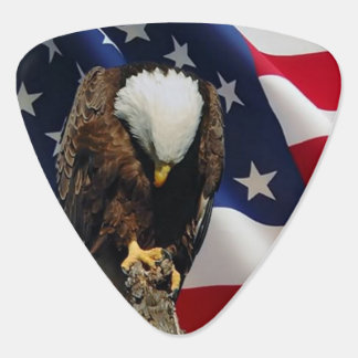 Praying Eagle American Flag sad red white blue Guitar Pick