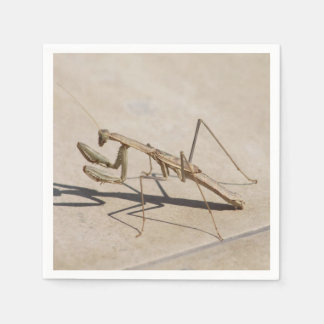 Praying Mantis and Shadow Paper Napkin
