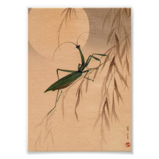 Praying Mantis and the Moon Japanese Art c. 1800s Poster