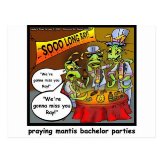 Praying Mantis Batchelor Party Funny Gifts & Tees Postcard