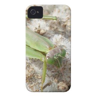 praying mantis Case-Mate iPhone 4 case