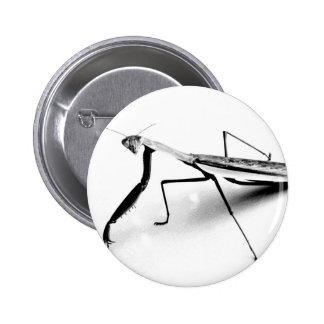 Praying Mantis Collection 2 Inch Round Button
